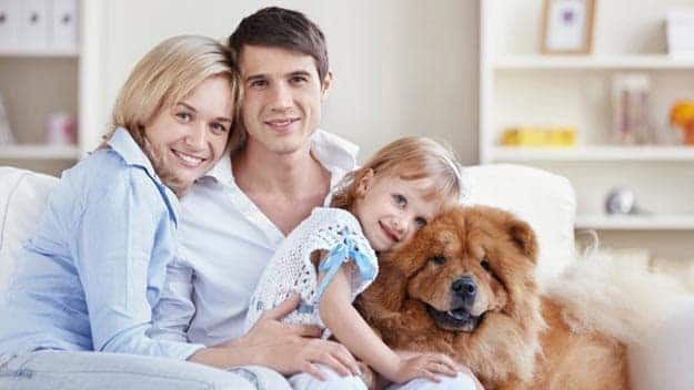 Wills & Trusts dog-young-family Direct Wills Globe Town